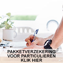 https://www.fwdwebdesign.nl/www.eenverzekering.be/wp-content/uploads/2018/12/home1-1-205x205.jpg