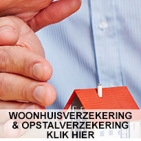 https://www.fwdwebdesign.nl/www.eenverzekering.be/wp-content/uploads/2018/12/home6-205x205.jpg
